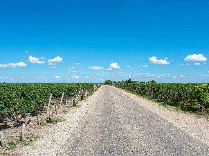 Sur la route des vins du médoc en Gironde
