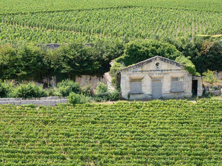 Visiter le beau village de St Emilion et son vignoble